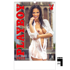 Wall calendar 2021 Pin-Up Playboy